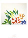 Acanthes Posters par Henri Matisse