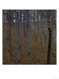 Beech Forest I Giclee Print by Gustav Klimt