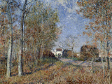 Road in the Forest of Fontainebleu Posters by Alfred Sisley