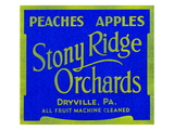 Stony Ridge Orchards Peaches and Apples Prints