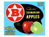 Fancy Grade Selected Tasmanian Apples Print