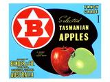Fancy Grade Selected Tasmanian Apples Poster
