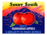Sunny South Tasmanian Apples Prints