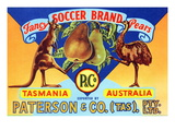 Fancy Soccer Brand Pears Poster