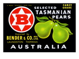 Bender and Co. Selected Tasmanian Pears Posters