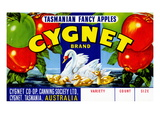 Cygnet Tasmanian Fancy Apples Poster