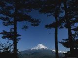 Snow-Capped Mt. Fuji Appears in the Distance Framed By Two Trees Photographic Print by Karen Kasmauski