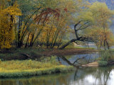 Trees in Autumn Hues at the Confluence of Gauley and Kanawha Rivers Photographic Print by Raymond Gehman