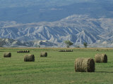Round Alfalfa Hay Bales Rest in the Forefront Photographic Print by Bill Ellzey