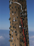 Coins Left Behind By Hikers are Embedded in a Shinto Shrine on Fuji Photographic Print by Karen Kasmauski