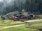 Kashmiri Village in Warwan Valley Beneath a Deodar Forest Photographic Print by Gordon Wiltsie