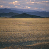 View of the Beginning of the Altai Range From the Gobi Desert Photographic Print by David Pluth