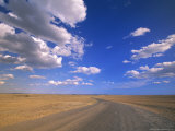 Cumulus Clouds Above a Dirt Road on a Wyoming Prairie Lámina fotográfica por John Eastcott & Yva Momatiuk