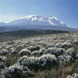 Mount Kilimanjaro, the Breach Wall, as Seen From Shira Plateau Fotografisk tryk af David Pluth
