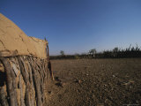 Shelter Made Out of Cow Dung and Sticks by the Himba Tribespeople Photographic Print by Joy Tessman