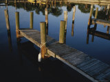 Boat Slips at a Marina on a Calm Morning Photographic Print by Raul Touzon