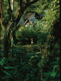 Woman Carries a Pail Past a Forest Village with Thatched Roofs Photographic Print by Steve Winter