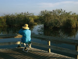Bird Watching From a Wooden Walkway on the Anhinga Trail Photographic Print by Raymond Gehman