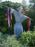Colonial-Style Scarecrow Guards a Williamsburg Garden Photographic Print by Stephen St. John