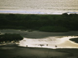 Group of Hippos at the Atlantic Shore at Twilight Photographic Print by Michael Nichols