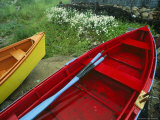 Colorful Rowboats Upon a Shore Near Wild Daisies Photographic Print by Michael Melford