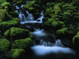 Moss Covered Rock Surrounding a Cascading Stream Photographic Print by Melissa Farlow