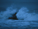 Hippopotamus Surging into the Atlantic Coast Surf Photographic Print by Michael Nichols