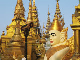 Gilded Buddhist Temple and Statue of Buddha Photographic Print by Steve Winter