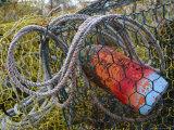 Patterns and Colors of Vintage Crab Traps and Floats Fotografisk trykk av Stephen St. John