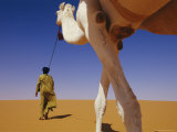 Tuareg Guide Leads His Camel into the Desert Photographic Print by Bobby Model
