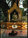 Buddhist Monk Meditating Near Altar with Buddha Statue and Gilt Photographic Print by Steve Winter