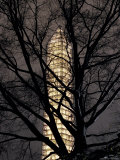 Washington Monument Sheathed in Scaffolding Photographic Print by Rex Stucky