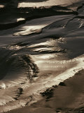 Close View of Tidal Mud Bathed in Sunlight Photographic Print by George Herben