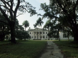 Old Antebellum Style Mansion Amid Palm Trees and Live Oaks Photographic Print by Michael Melford