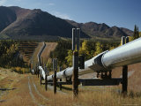 Trans-Alaska Pipeline at Squirrel Creek Photographic Print by George Herben