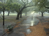 Rain Softly Falls on White Point Gardens Photographic Print by Rex Stucky