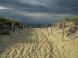 Fence-Lined Path To the Beach at Cape Cod National Seashore Photographic Print by Michael Melford