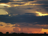 Dramatic Sky at Twilight with Clouds and Flying Bird Silhouette Photographic Print by Steve Winter