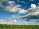 Cloud-Filled Sky over Lush Green Grassland Photographic Print by Steve Winter