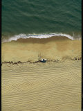 Aerial View of Truck and People on Beach with Tire Tracks Photographic Print by Steve Winter