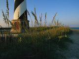 Sea Oats Bending in Wind Near the Cape Hatteras Lighthouse Photographic Print by Steve Winter
