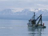 Trawler Fishes For Pink Salmon Fotografisk tryk af Rich Reid