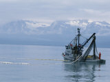 Trawler Fishes For Pink Salmon Photographic Print by Rich Reid