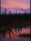 Twilight View of Mount Sanford with Reflection in Water Photographic Print by Michael S. Quinton