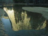 El Capitan Reflected on the Surface of the Merced River Photographic Print by Phil Schermeister