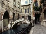View of a Canal in a Quiet Residential Section of Venice Photographic Print by Rex Stucky