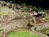 Houses and Rice Terraces in Village Photographic Print by Craig Pershouse