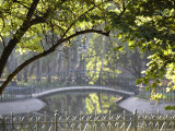 Bridge in Planty Park in Early Morning Light Photographic Print by David Borland
