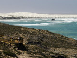 Whale Watching at the Head of Bight Photographic Print by Philip Game
