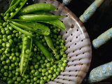 Freshly Podded Peas on Old Green Chair Photographic Print by John Hay